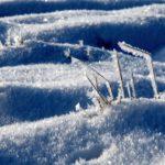 polarni-expedice-ondrejov-u-prahy-09