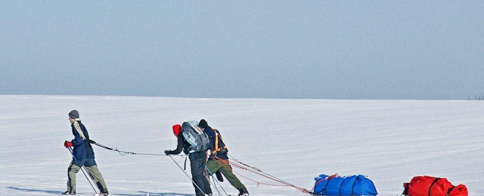 Polární expedice se saňemi